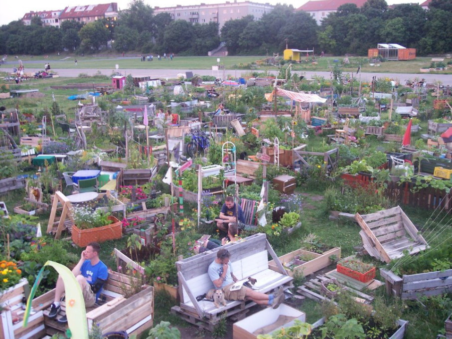 The Allmende Kontor on Berlin's former Tempelhof airfield is a community garden and a platform for networking, making it the perfect choice as a We-Traders project. (Photo: K.D. Grote)