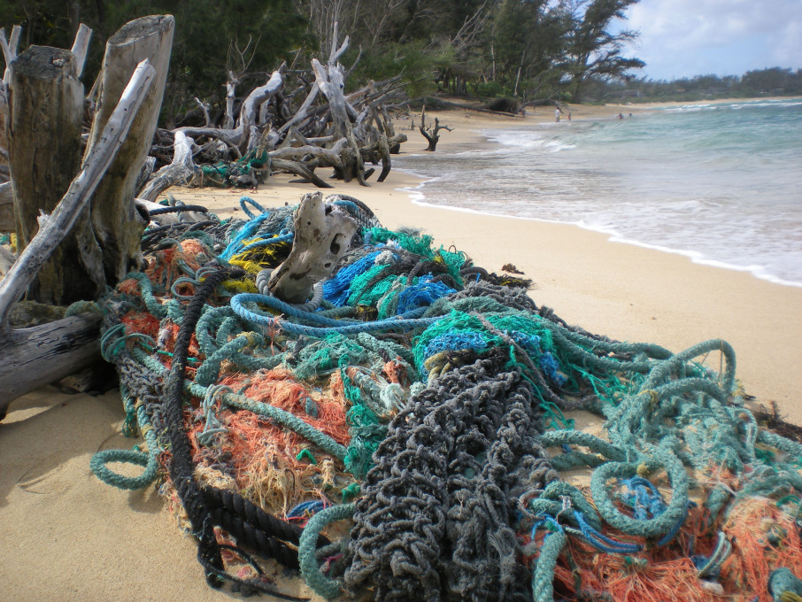 Out to Sea? Tangled nets. Hawaii, USA, Photo: © Chris Pincetich/Marine