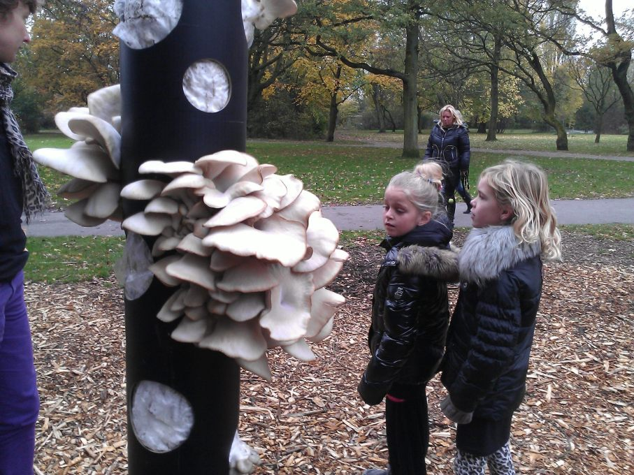 The 2012 Mushroom Trees project in Amsterdam demonstrated how to grow oyster mushrooms on coffee grounds, cardboard and paper. Initiatives like this raise awareness about re-using resources. (Photo: Groundcondition)