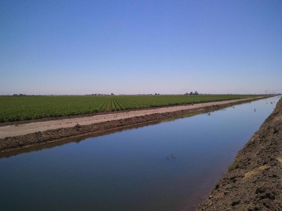 The remaining families established a new 34.4 hectare farm, located in Buttonwillow, California, about a two-hour drive from Los Angeles. (Photo courtesy SCFHEF)