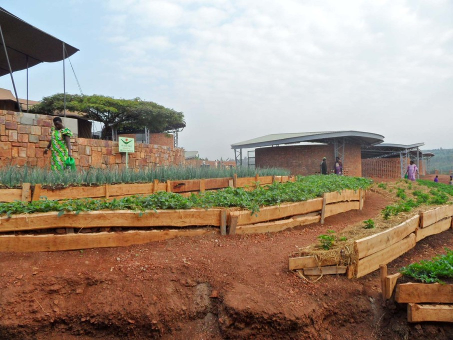 Farming: terraces for learning sustainable subsistence-farming skills. (Photo courtesy Sharon Davis Design)