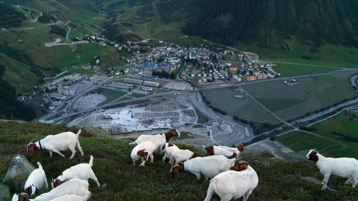 """Andermatt, Global Village"", directed by Leonidas Bieri & Robin Burgauer, Switzerland, 2014, follows the seven-year development of a Swiss farming village into an luxury resort, complete with six hotels and, of course, a heated ski lift"