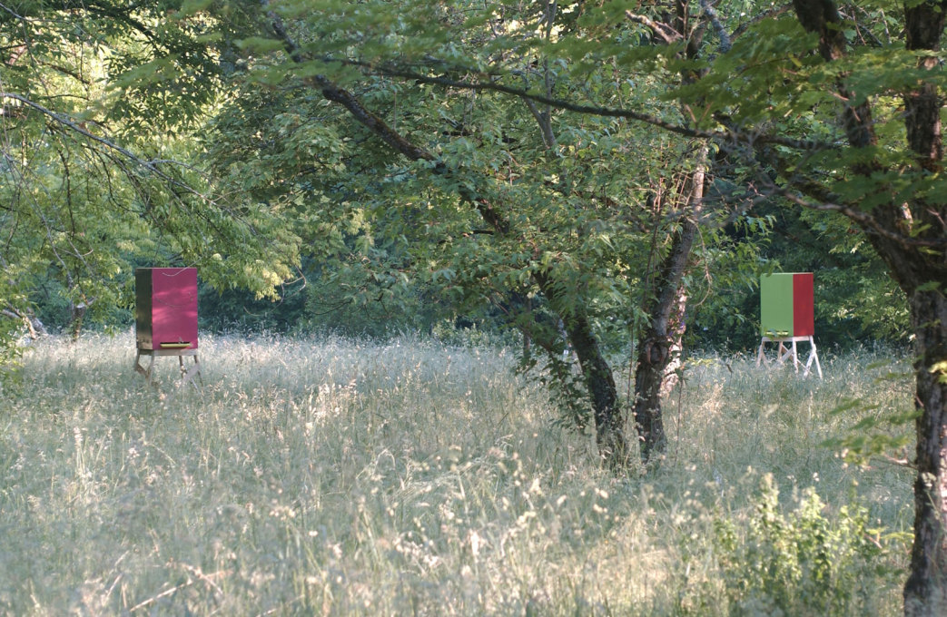 Beehives for Olaf Nicolai, by Sauerbruch Hutton 2002 (Image: ©Franz Hoeck/Sauerbruch Hutton)