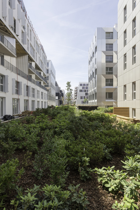 ...with generous spaces for communal gardens. (Photo: Frans Parthesius)