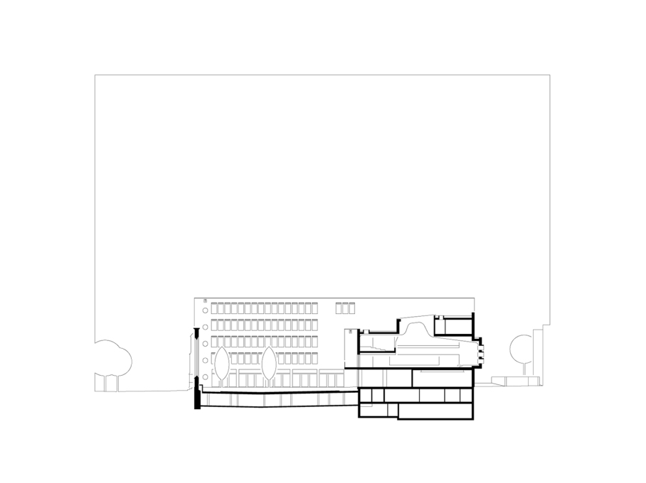 Section through courtyard and lecture hall. (Drawing: Lederer Ragnarsdóttir Oei Architects)