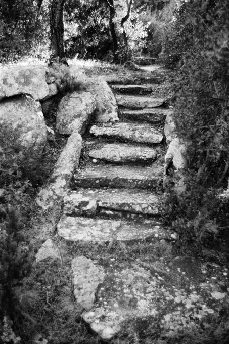 """...some of its steps made from stone blocks..."" (Photo: Gion von Albertini)"
