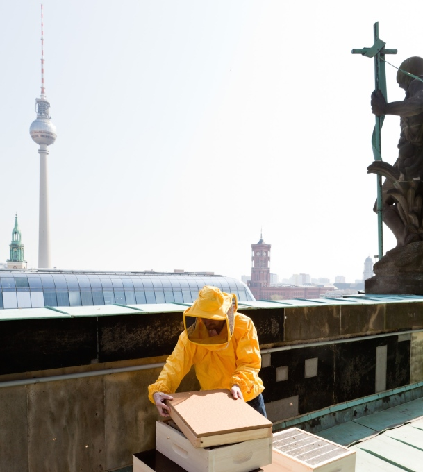 "The ""Berlin summt!"" (Berlin is buzzing!) initiative will invite festival goers to visit the bees who live in hives atop the city cathedral. (Photo: © Stiftung für Mensch und Umwelt)"