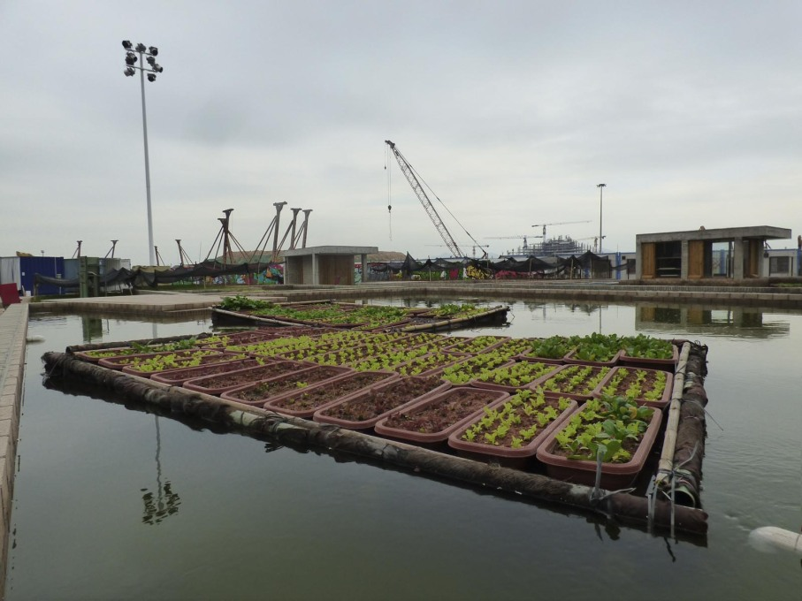 """Floating Fields"" installation by Thomas Chung, School of Architecture, The Chinese University of Hong Kong, urban gardening that draws on the traditional local mulberry tree, silkworm and carp-pond ecosystem of farming. (Photo: Rob Wilson)"