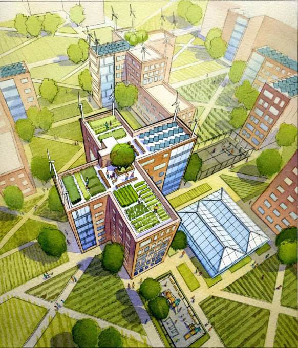 And even utilising roofs for urban agriculture. (Image courtesy Alexander Gorlin Architects)