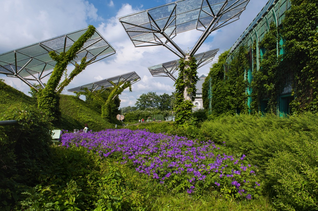 A vibrant botanical garden climbs from ground level up onto the building's roof… (Photo courtesy The University of Warsaw)