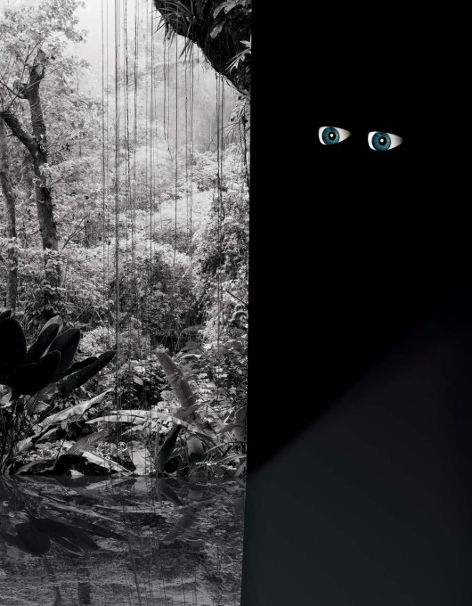 "Roman Schramm: ""Eyes (Jungle)"" from his series ""Satellite City"". (Image © the artist)"