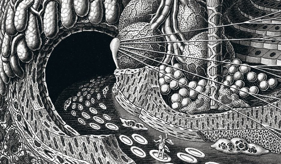 "Detail from Fritz Kahn' ""Entering a gland cave""' 1924. (All images from ""Fritz Kahn"" monograph by Uta and Thilo von Debschitz, Taschen, 2013)"